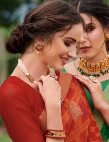 SUBHASH-PRESENTS-BLOOM-CHIFFON-GEORGETTE-DESIGNER-SAREE-2-jpg