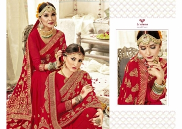 Triveni Abhinandan Saree Wholesale Supplier (3)