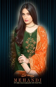 YOUR CHOICE MEHANDI SALWAR SUITS WHOLESALE PRICE (1) JPG
